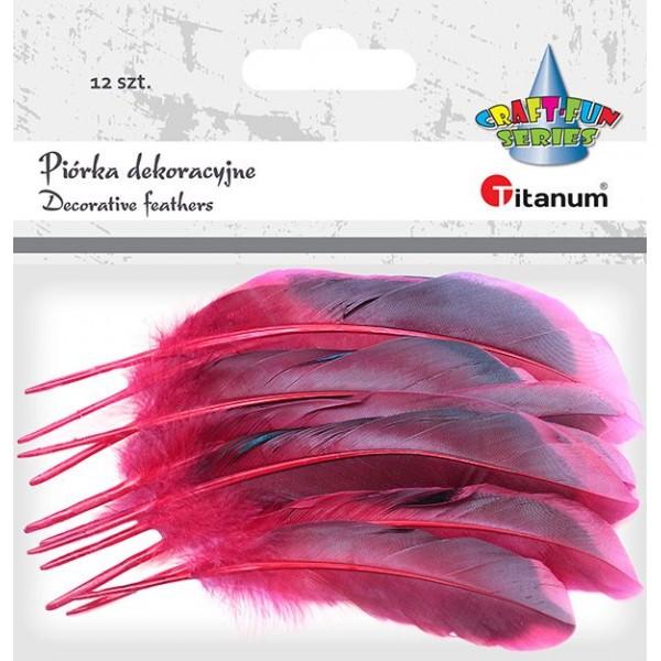Декоративные перышки черно-красные Titanum