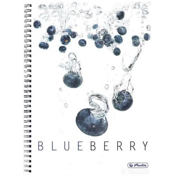 тетрадь Blueberry